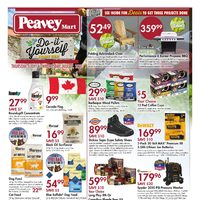 PeaveyMart - Do-It-Yourself Project Event Flyer